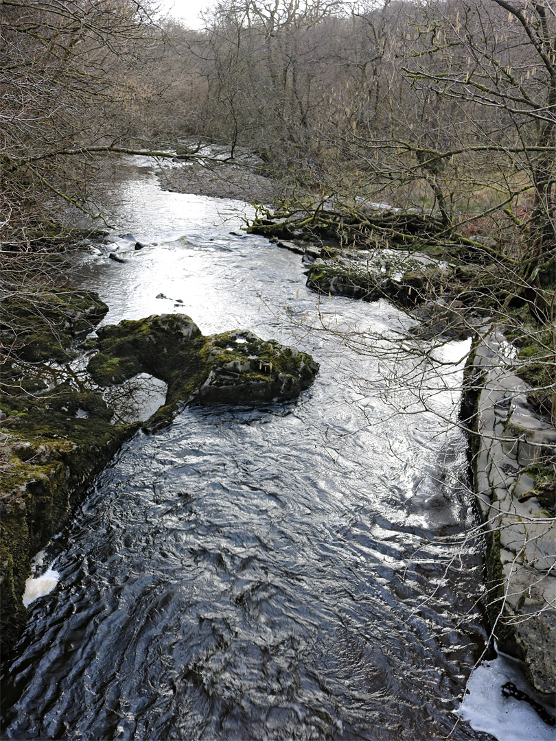 Straight section of the river