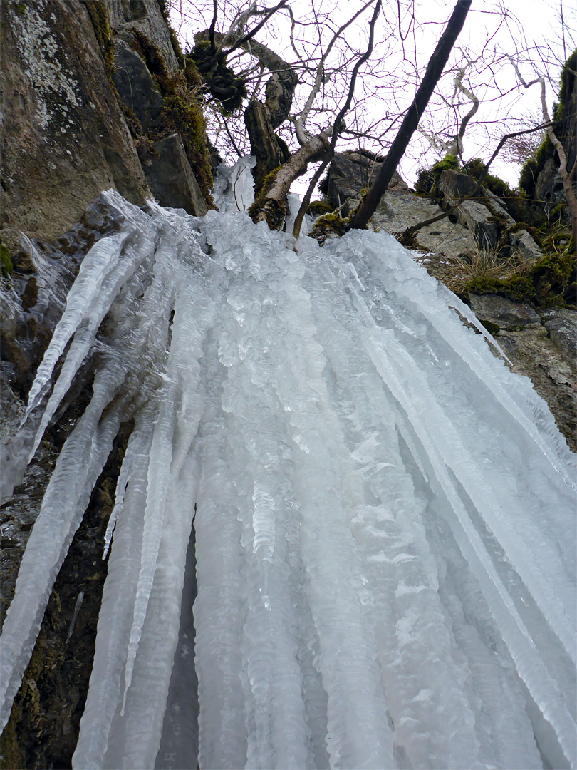 Fused icicles