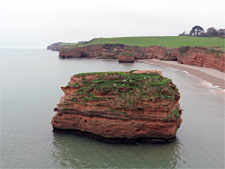 North of Ladram Bay