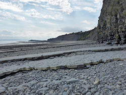 Strata near Lavernock Point