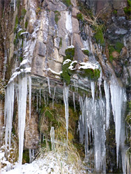 Icicles on a cliff