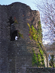 Ivy on the southwest tower