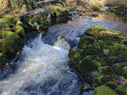 Cascade and mossy rocks