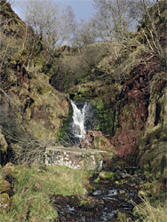 Cascade on the Nant Bwrefwr
