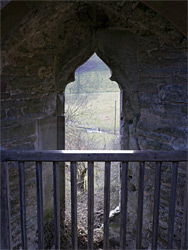 Trefoil window