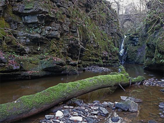 Cwm Clydach National Nature Reserve
